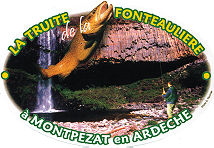 La truite de la Fontaulière